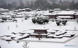 """Mai phục 3 giờ bắt nghi phạm, tổ trinh sát Trung Quốc ngớ người vì bị bão tuyết """"chôm"""" xe"""