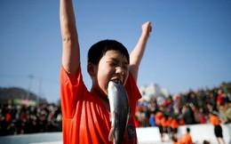 24h qua ảnh: Cậu bé Hàn Quốc vui sướng ngậm cá hồi sống trong lễ hội băng