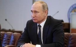 Tổng hành dinh chiến dịch tranh cử của ông Putin sẽ sớm hoạt động