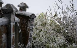 Băng tuyết phủ trắng đỉnh Phia Oắc ở Cao Bằng