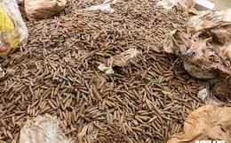 Chủ cơ sở phế liệu tiết lộ nguồn gốc 6 tấn đầu đạn vừa được phát hiện ở Hưng Yên