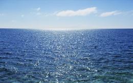 Lênh đênh một mình trên biển cả, nhờ một bài học cũ, cô gái đã sống sót kỳ diệu