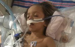 Cái kết đau lòng của cậu bé 6 tuổi bị dơi cào xước tay