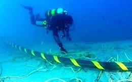 Google sẽ xây dựng 3 tuyến cáp mới dưới đáy biển trong năm 2019