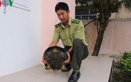 Bắt được rùa răng quý hiếm nặng 11 kg, thả về tự nhiên