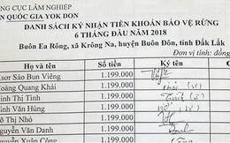 Đắk Lắk: Đưa người chết vào danh sách nhận tiền bảo vệ rừng