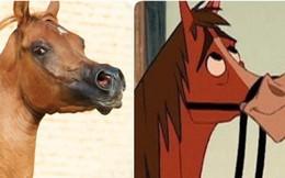 Con ngựa có khuôn mặt như trong phim hoạt hình này hé lộ sự thật về một xu hướng đáng lo ngại đằng sau