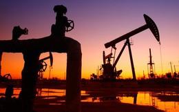 Giá dầu liên tiếp giảm dù Mỹ tái áp trừng phạt lên Iran