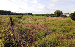 Đề xuất thu hồi gần 20ha đất và biệt thự của cựu Bí thư thị xã Bến Cát
