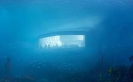 Sắp mở cửa nhà hàng dưới nước lớn nhất thế giới