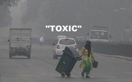"""""""Toxic"""" được Oxford Dictionary bình chọn là từ ngữ của năm 2018"""