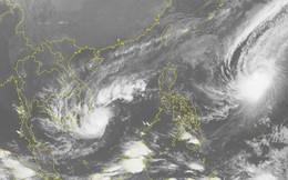 Tránh bão số 9, học sinh Cần Giờ được nghỉ học từ hôm nay