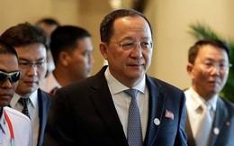 Bộ trưởng Ngoại giao Triều Tiên sẽ thăm Việt Nam từ ngày 29/11
