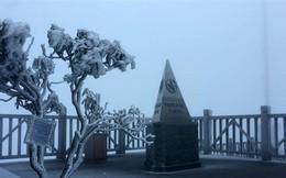 Sương muối trắng đỉnh Fansipan, nhiệt độ ở Sa Pa giảm còn 7,2 độ