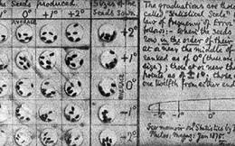 Vụ truy án bằng dấu vân tay đầu tiên tại Hoa Kỳ