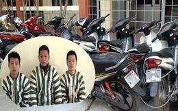 Kẻ trộm xe máy liên tỉnh mài số khung, số máy rồi tiêu thụ