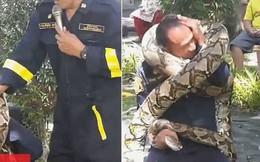Lính cứu hỏa bị trăn khổng lồ 5 mét kẹp cứng khi trình diễn