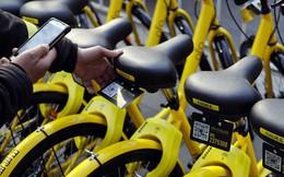 Startup chia sẻ xe đạp được Alibaba rót vốn đứng trên bờ vực phá sản