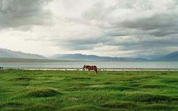 Cuộc sống Mông Cổ ấn tượng qua ống kính nhiếp ảnh gia Pháp