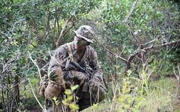 Thủy quân lục chiến Mỹ sẽ trang bị mẫu quân phục tác chiến mới