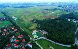 Chính phủ đồng ý cho Hà Nội xây Trường đua ngựa