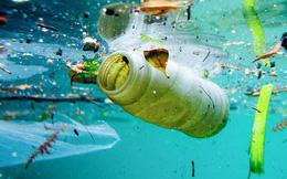 Đây mới là thứ kinh khủng nhất ở vực sâu nhất của Trái đất: Các hạt vi nhựa