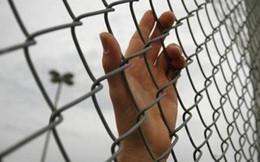 Trèo tường vượt ngục, tù nhân bị điện giật chết