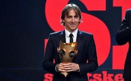 Sau quả bóng vàng, Modric tiếp tục được vinh danh ở Croatia