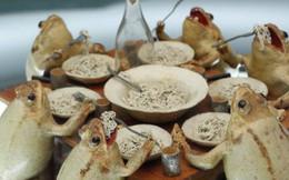 Tham quan bảo tàng ếch độc nhất vô nhị ở Thụy Sĩ với đầy những bất ngờ