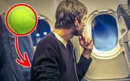 Đây là lý do nhiều người mang bóng tennis lên máy bay: Chuyên gia chỉ ra lợi ích vàng