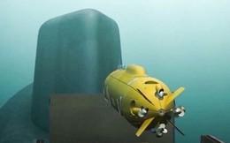 [ẢNH] NATO hốt hoảng khi Nga công bố số lượng ngư lôi hạt nhân Poseidon sắp trực chiến