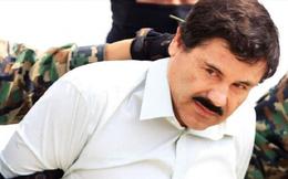 Chấn động lời khai hối lộ 100 triệu đô của trùm ma túy Mexico El Chapo