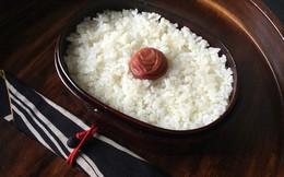 """Hướng dẫn """"nhập môn"""" cho tín đồ văn hóa Nhật: Cách phân biệt các loại bento"""
