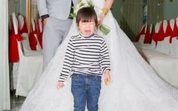 Đứa trẻ khóc thét trong bức ảnh cưới của dì, dân mạng tò mò về nguyên nhân