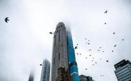 Hiện thực hố sâu giàu nghèo khủng khiếp ở Mỹ: Chi 200 triệu USD mua penthouse rồi đuổi hàng tá gia đình trung lưu khỏi tòa nhà