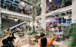 Ghé quán cafe xanh mát giữa lòng Hà Nội vào dịp Tết để biết thật sự bạn cần gì