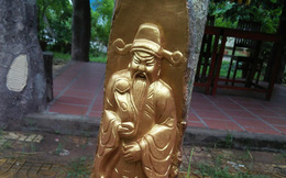 """Người dát vàng lên thân cây ở Cần Thơ quả quyết mình không """"chơi ngông"""""""