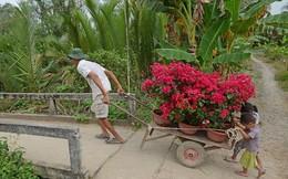 Hai em nhỏ cúi đầu đẩy xe đầy hoa, bức ảnh khiến người ta mỉm cười vì quá yên bình, quá đẹp