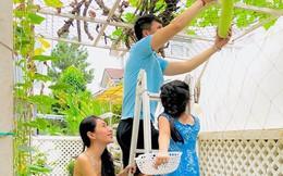 """Cảnh thu hoạch rau quả sạch """"gây thèm muốn"""" của vợ chồng Thủy Tiên trong biệt thự triệu USD"""