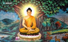 7 lời đúc kết Phật dạy mỗi người, nếu biết nắm bắt cuộc sống tất sẽ viên mãn đủ đầy