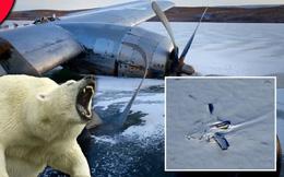 """NASA: Máy bay bí ẩn rơi ở Bắc Cực, nhưng """"số phận"""" của người sống sót còn đáng sợ hơn"""