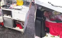 Em bé ngoan ngoãn nằm trong xe bán bánh mì để mẹ mưu sinh gây xúc động mạnh