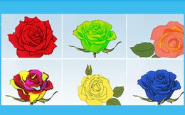 Chọn bông hồng bạn thấy đẹp nhất, đáp án sẽ giúp bạn khám phá những điều thú vị trong con người mình