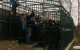 Kỳ lạ: Đi cổ vũ bóng đá, cổ động viên bị nhốt vào chuồng như thú hoang