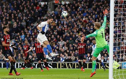 Vòng 29 Premier League: Brighton 1-0 Huddersfield Town