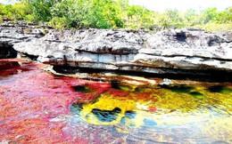 """Đây là con sông đẹp nhất thế giới: Lung linh 5 màu sắc, được mệnh danh là """"cầu vồng sống"""" vi diệu nhất"""