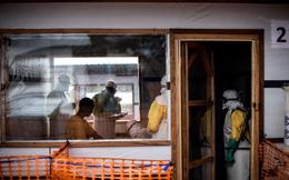 CHDC Congo: Nhiều cử tri bầu cử muộn do dịch Ebola và xung đột bạo lực