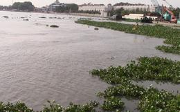 Thi thể nữ giới đang phân hủy, vùng bụng có nhiều vết đâm trôi trên sông Sài Gòn