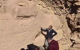 Khai quật tượng nhân sư mới có đầu hình... con cừu tại Ai Cập