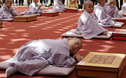 24h qua ảnh: Cậu bé ngủ ngon lành khi học làm sư trong chùa Hàn Quốc